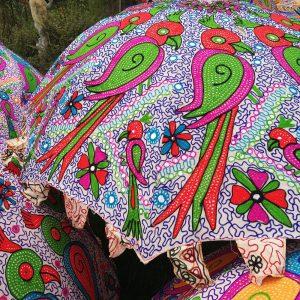 Sfeervolle parasol met papegaai voor in de tuin of voor op het strand.